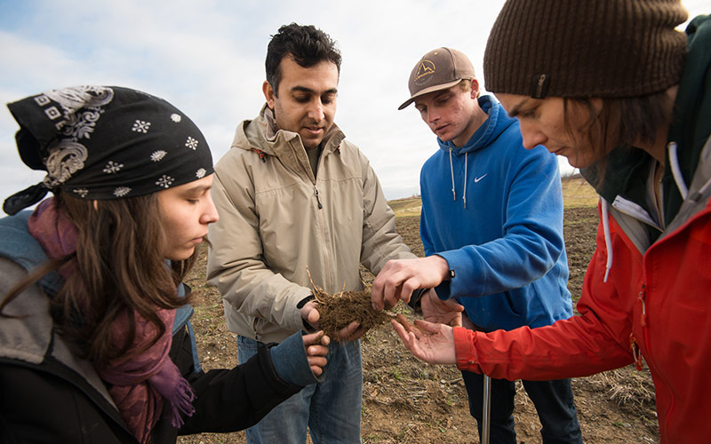 Students examine soil