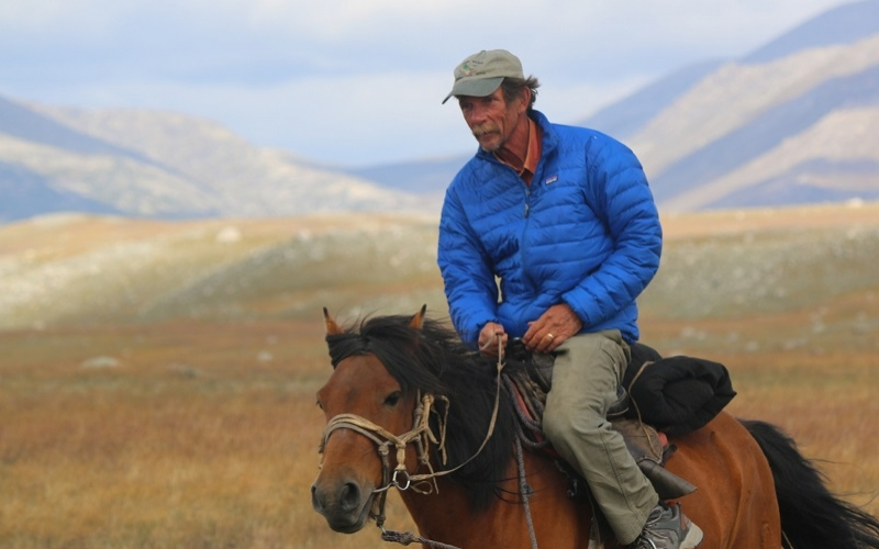 Zillman Professorship