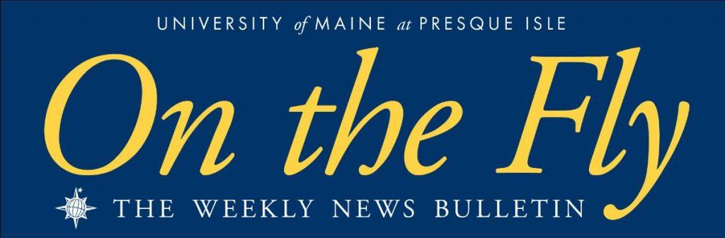 On The Fly news bulletin